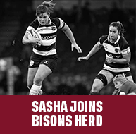 SASHA JOINS THE BISONS HERD AS HEAD COACH